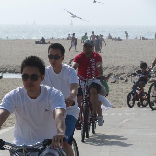 bikers w bird