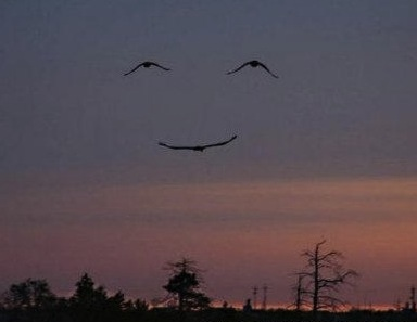 smiling sky