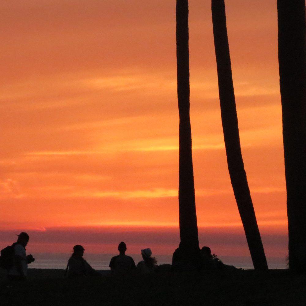 straggler sunset